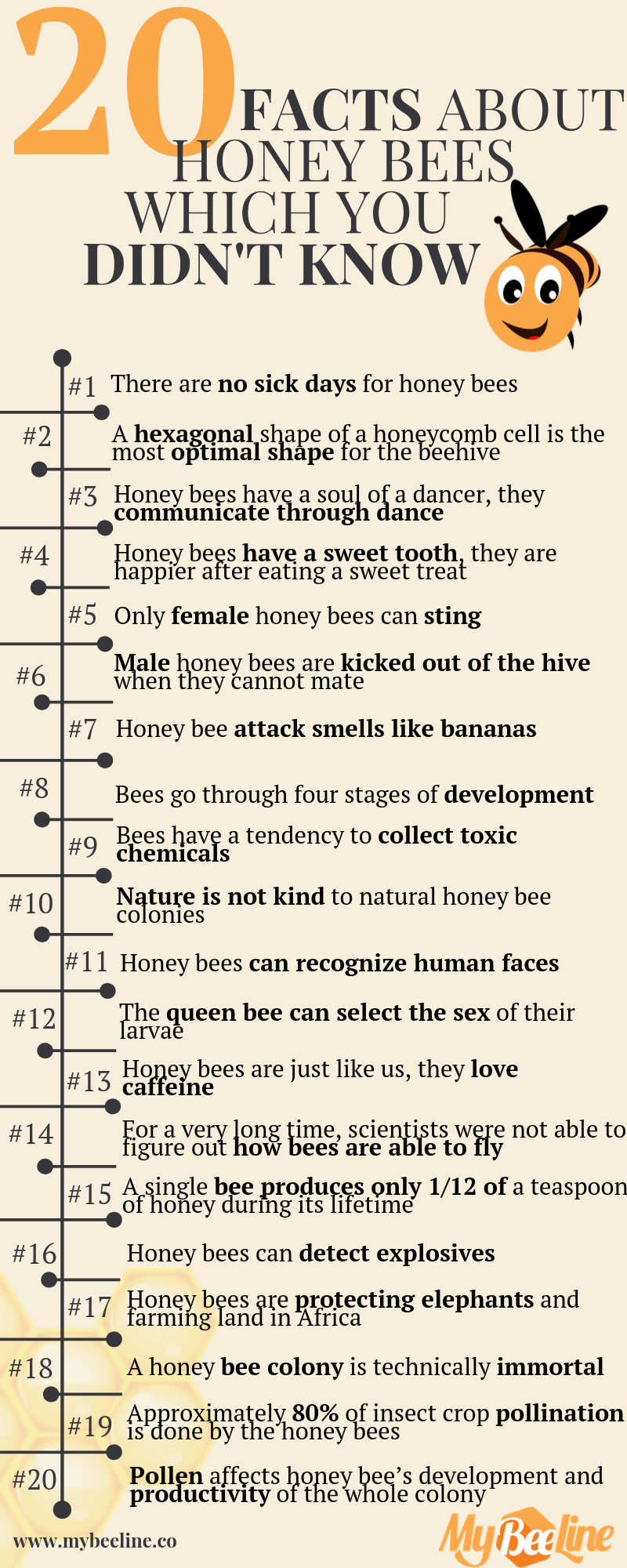 20 facts about bees
