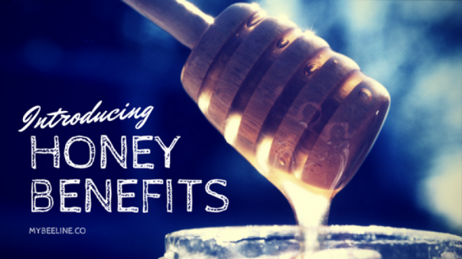 Is Honey Really Good For You? Read Our Research and Find Out