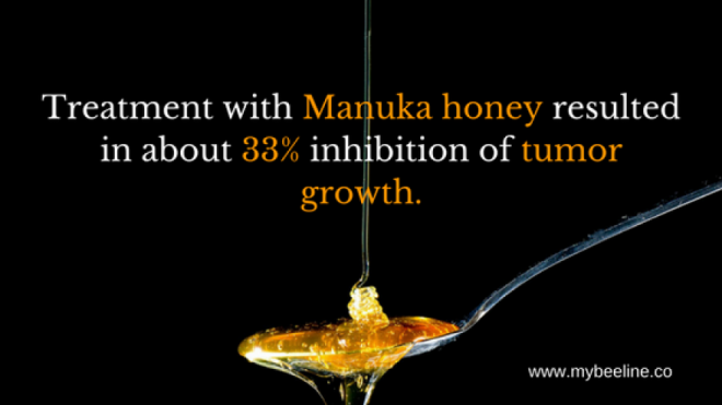 manuka honey slows down the growth of cancer cells