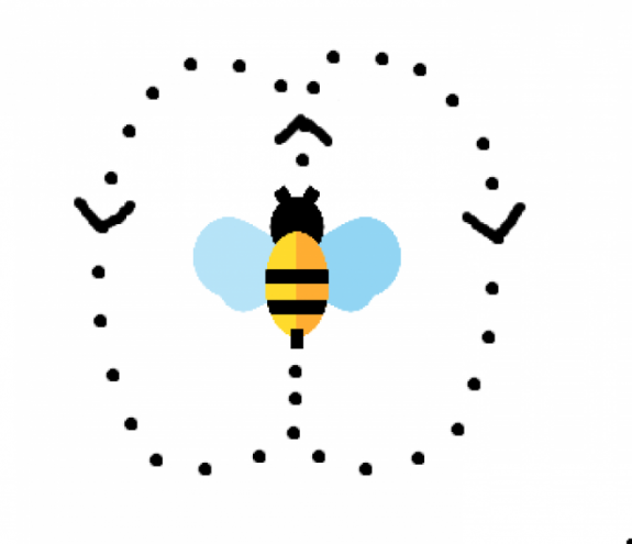 bee waggle dance