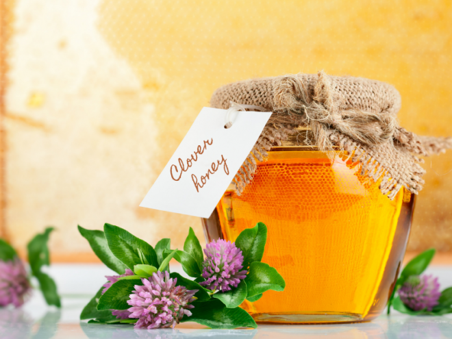 What is Clover Honey?